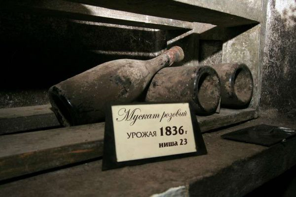 Мускат розовый Магарач 1836