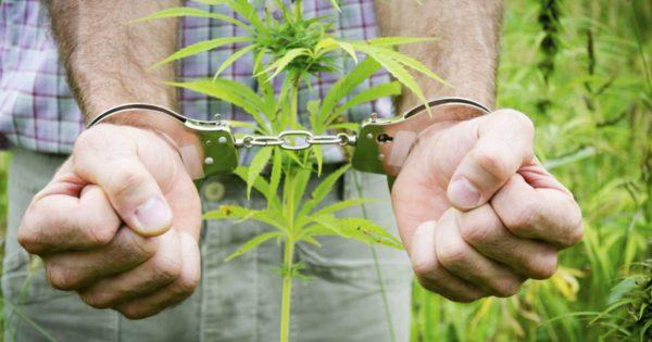 кримінальна відповідальність за зберігання поширення наркотиків