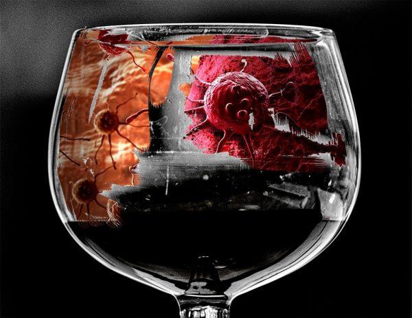 Когда в организм вливается алкоголь в неограниченных количествах, имеет место патологическое увядание защитных сил организма, тем самым злокачественные опухоли чувствуют себя хозяевами положения.