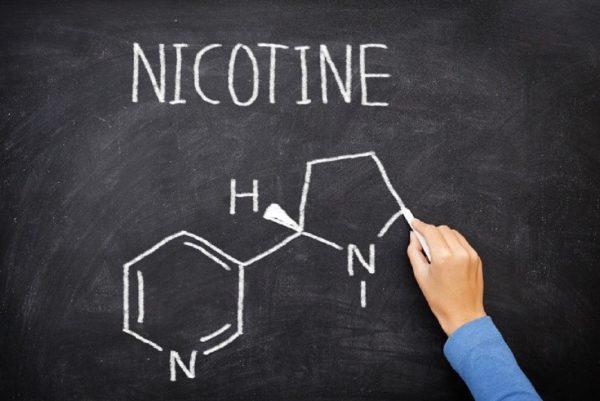 Смертельная доза никотина для человека