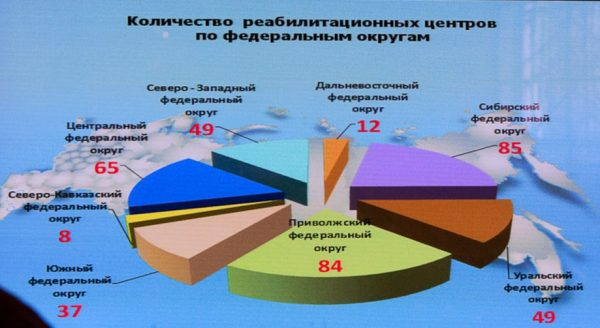 The number of rehabilitation centres in Russia