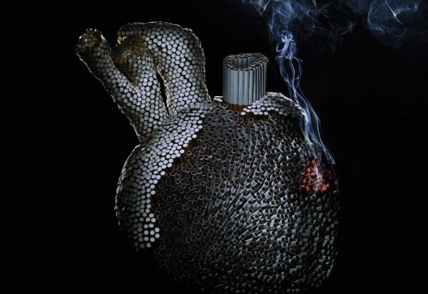 Tobacco and heart