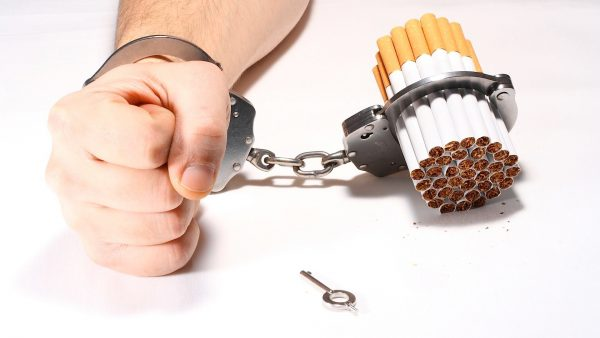 how Smoking affects the human kidney
