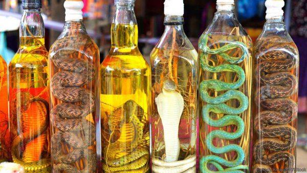 Vietnamese vodka with a snake
