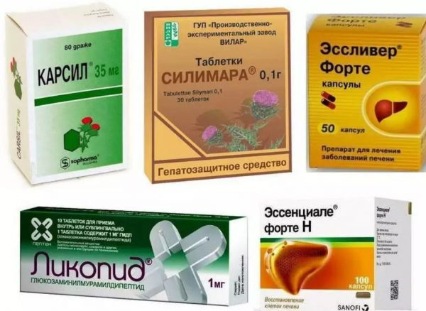 Drugs hepatoprotectors the liver