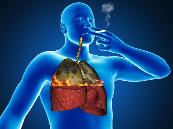 The effect of nicotine on the body