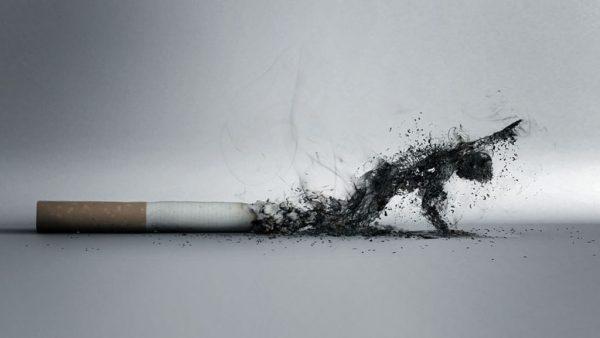 10 фактов о вреде курения