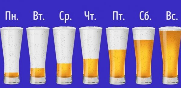 drink beer every day
