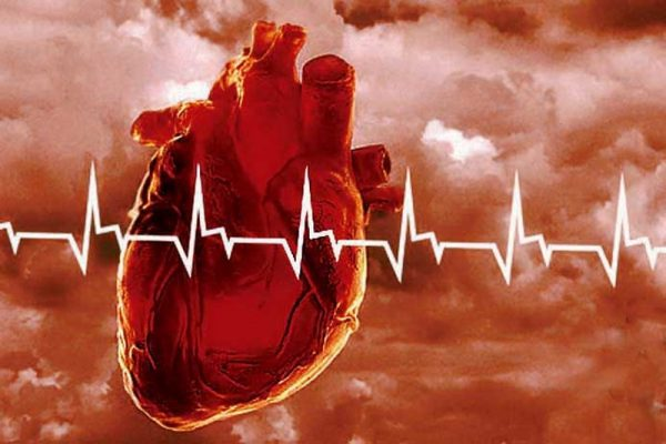 The effect of menthol on heart
