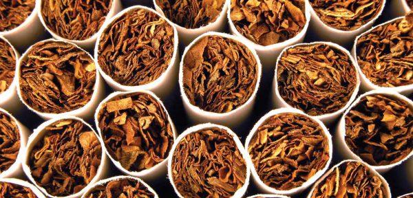 : срок годности сигарет